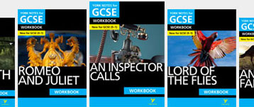 GCSE Workbooks York Notes