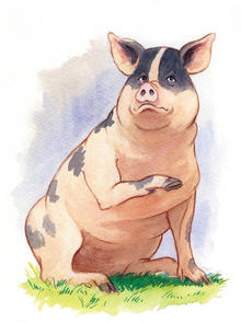 """characterization of snowball in george orwells animal farm The irony in george orwell's """"animal farm"""" that whatever is animal is a friend animal farm napoleon and snowball (animal farm."""