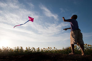 Kite Flying Sunset