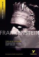 York Notes Frankenstein: Advanced A Level Revision Study Guide