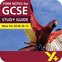 Lord of the Flies (Grades 9–1) York Notes GCSE Revision Guide
