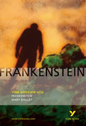 York Notes Frankenstein: GCSE GCSE Revision Study Guide