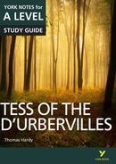York Notes Tess of the D'Urbervilles: A Level A Level Revision Study Guide