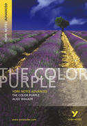 The Color Purple: Advanced York Notes A Level Revision Guide