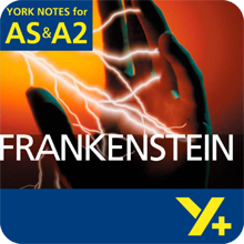 Frankenstein: AS & A2 York Notes A Level Revision Guide