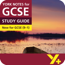 Great Expectations (Grades 9–1)  York Notes GCSE Revision Guide