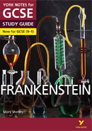York Notes Frankenstein (Grades 9–1)  GCSE Book Cover