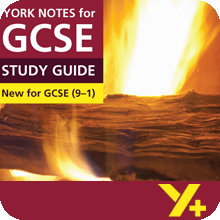 Jane Eyre (Grades 9–1)  York Notes GCSE Revision Guide