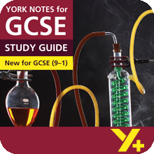 Frankenstein (Grades 9–1)  York Notes GCSE Revision Guide
